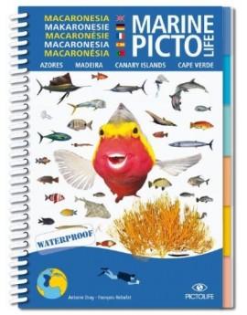 Macaronesian Marine Pictolife
