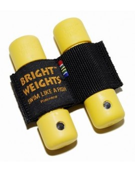 Bright Weights 0,5kg Bullet Weight