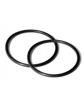 BigBlue O-Rings (x2) AL450 Series