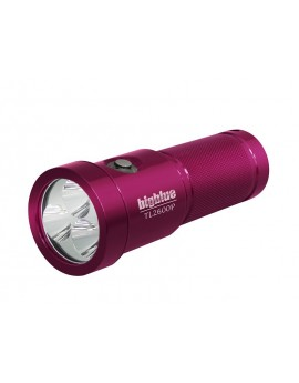 BigBlue TL2600P Tech Light