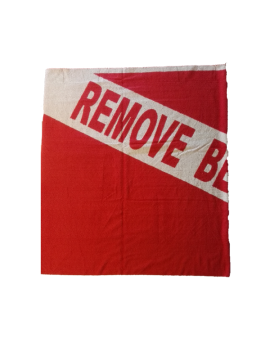 Remove Before Dive Beach Towel