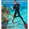 Onderwater Naturalist