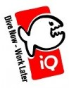 iQ Reg Case
